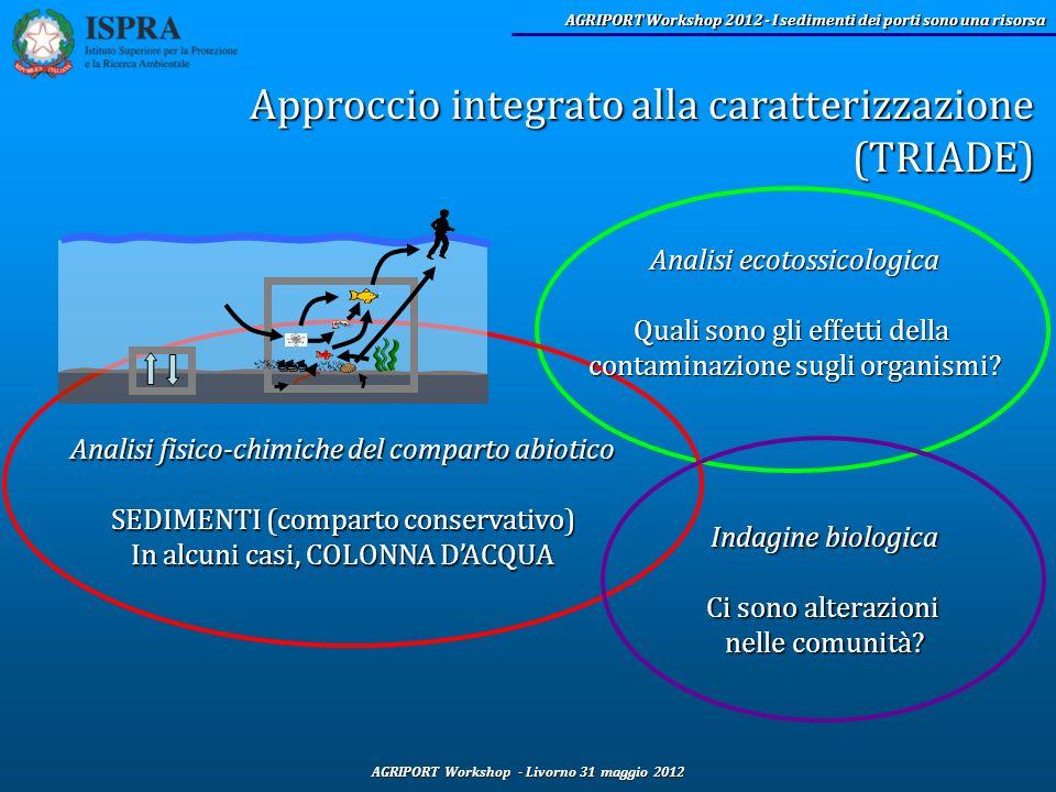 Approccio integrato alla caratterizzazione (TRIADE)