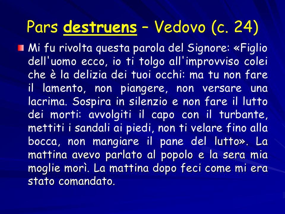 Pars destruens – Vedovo (c. 24)