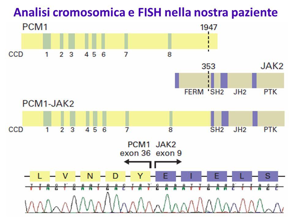 Analisi cromosomica e FISH nella nostra paziente