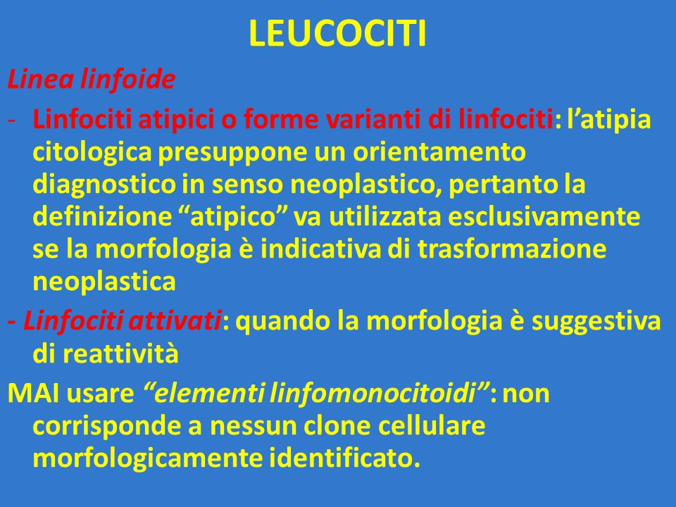 LEUCOCITI Linea linfoide