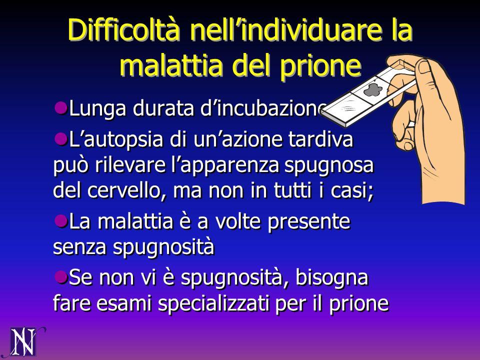 Difficoltà nell'individuare la malattia del prione