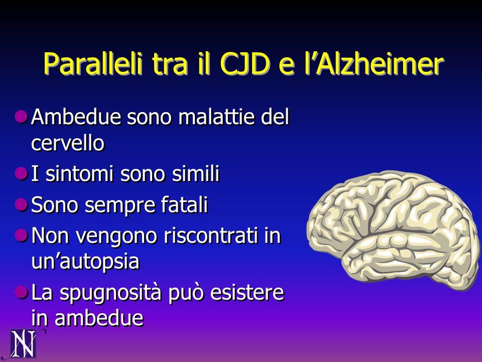 Paralleli tra il CJD e l'Alzheimer