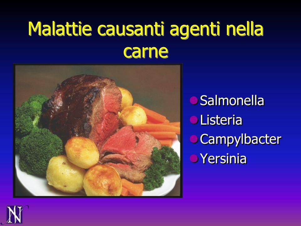 Malattie causanti agenti nella carne