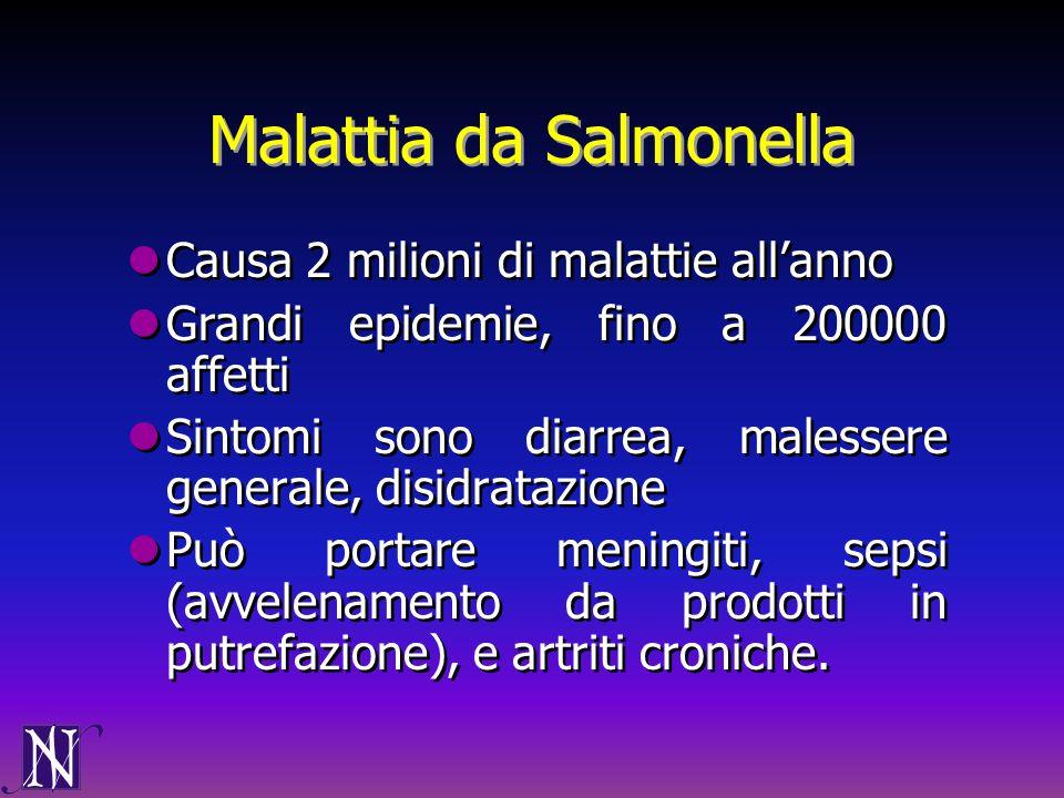 Malattia da Salmonella