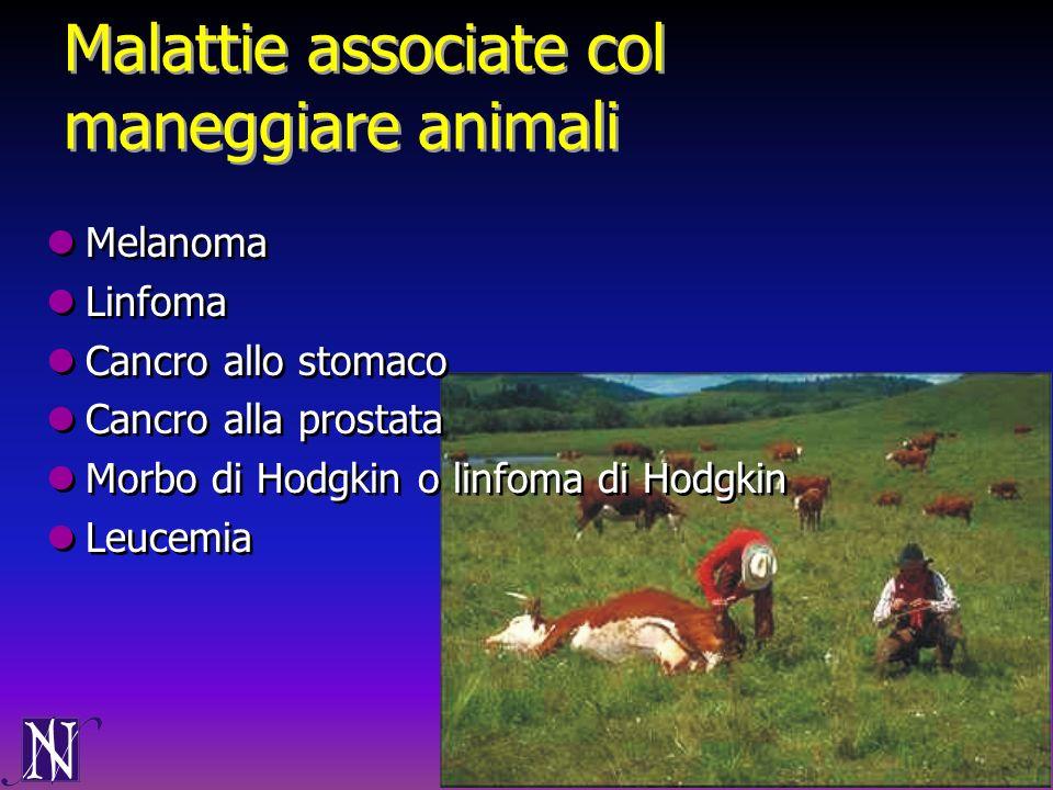 Malattie associate col maneggiare animali