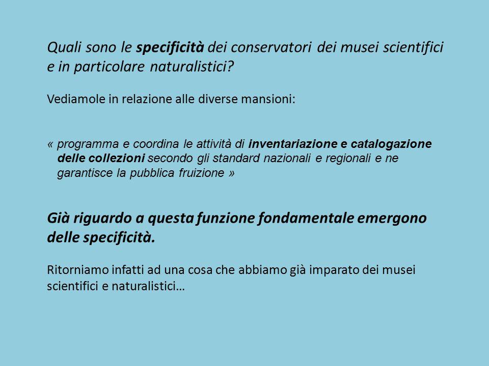 Quali sono le specificità dei conservatori dei musei scientifici e in particolare naturalistici