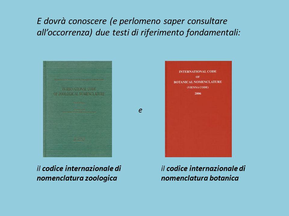 E dovrà conoscere (e perlomeno saper consultare all'occorrenza) due testi di riferimento fondamentali: