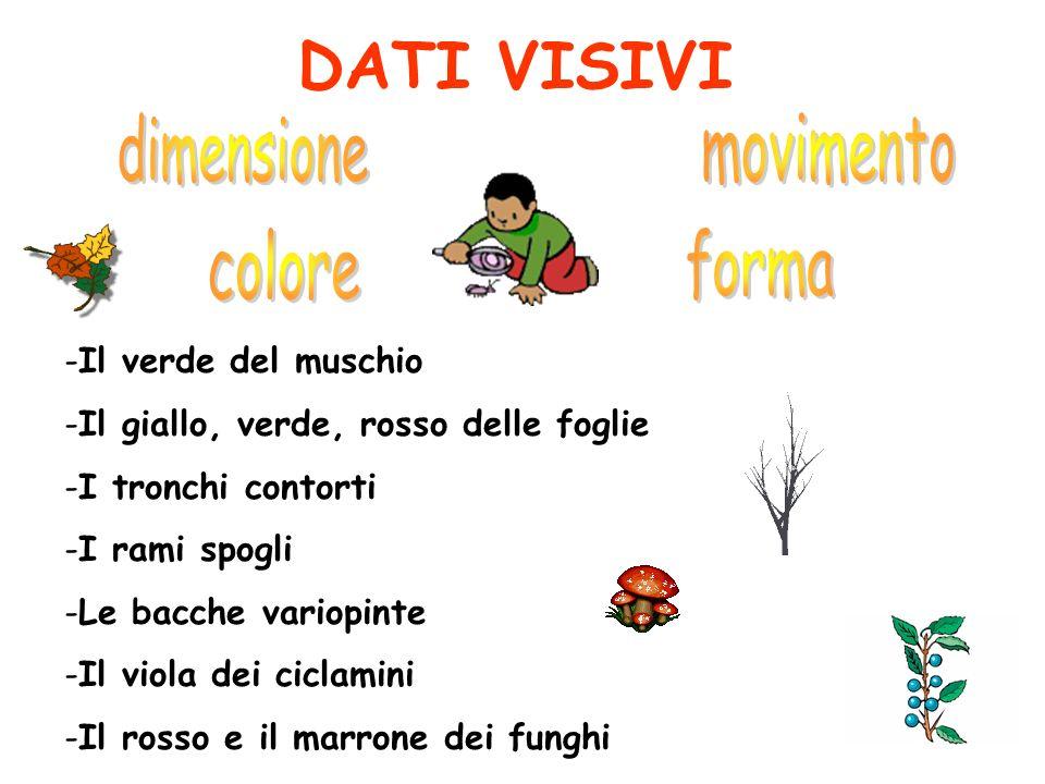 DATI VISIVI dimensione movimento colore forma Il verde del muschio