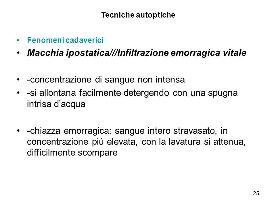 Macchia ipostatica///Infiltrazione emorragica vitale