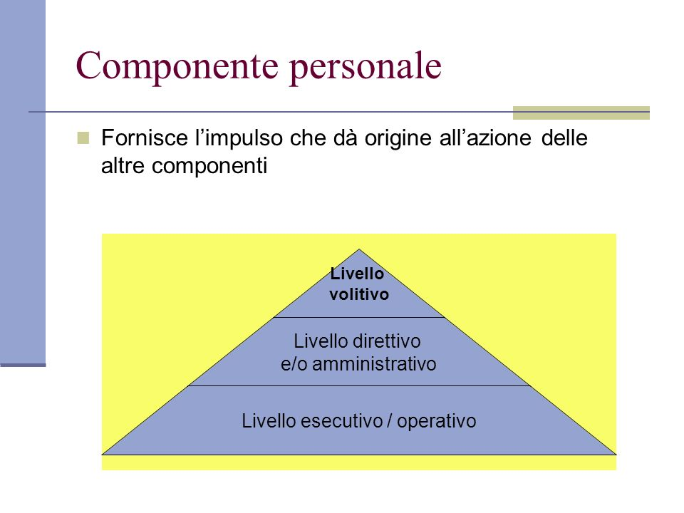 Componente personale Fornisce l'impulso che dà origine all'azione delle altre componenti