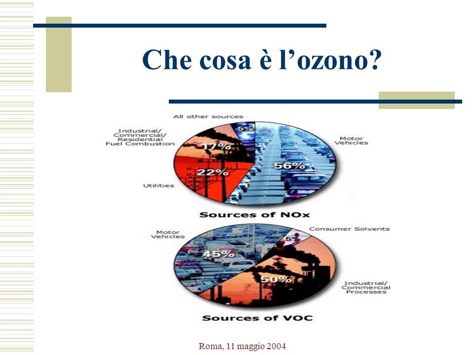 Che cosa è l'ozono Roma, 11 maggio 2004