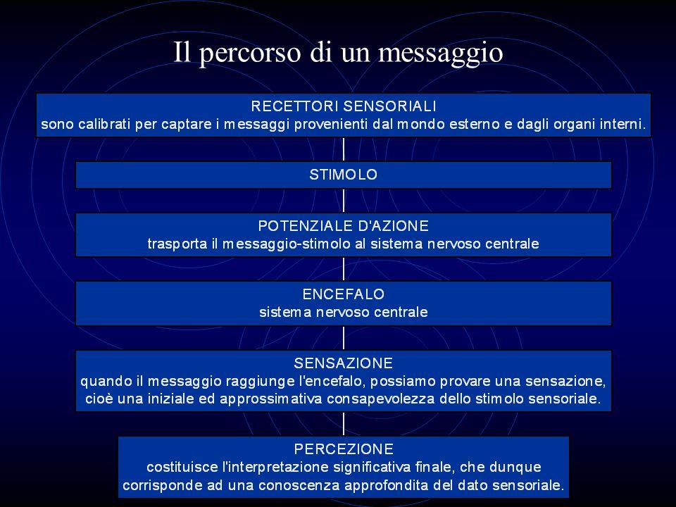 Il percorso di un messaggio
