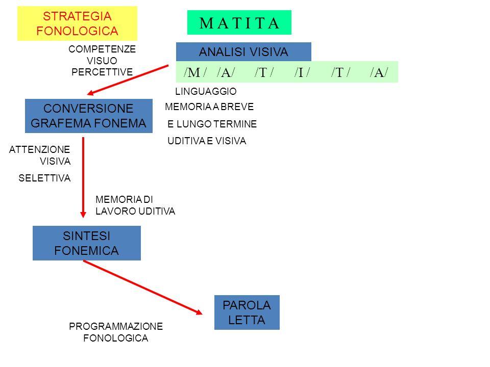 M A T I T A /M / /A/ /T / /I / /T / /A/ STRATEGIA FONOLOGICA