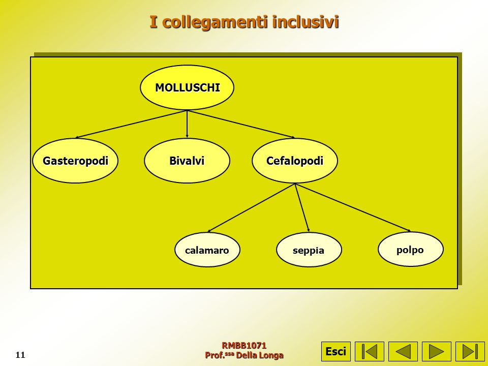 I collegamenti inclusivi