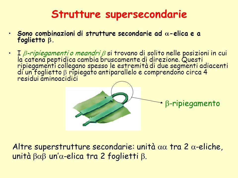 Strutture supersecondarie