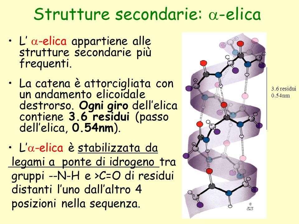 Strutture secondarie: a-elica