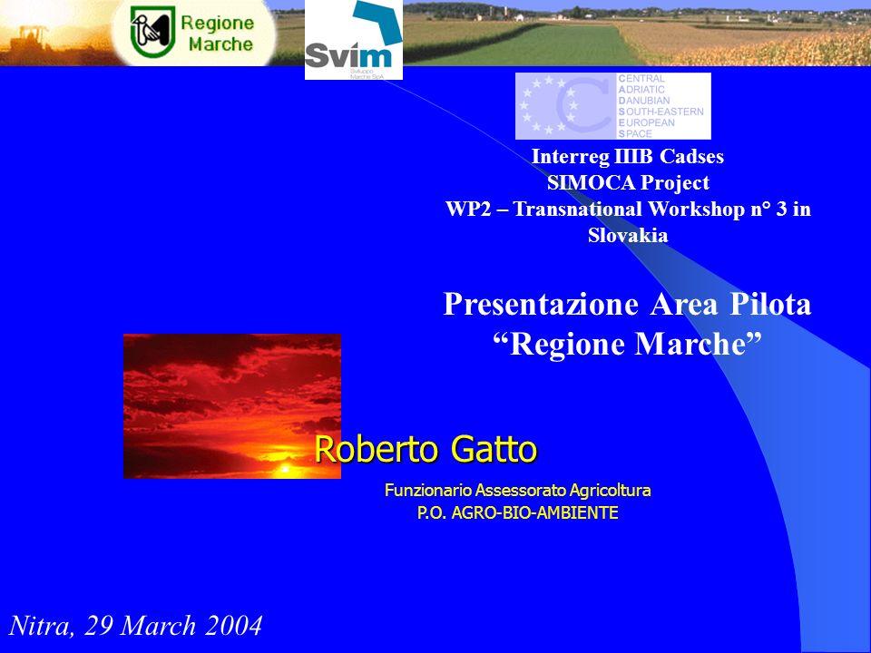 Roberto Gatto Presentazione Area Pilota Regione Marche