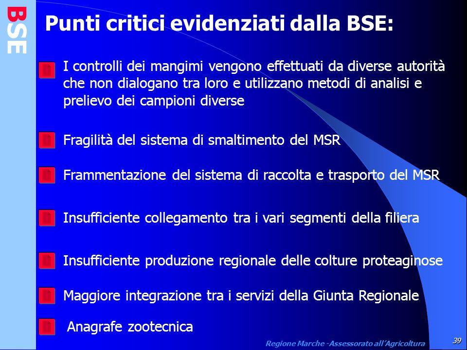 BSE Punti critici evidenziati dalla BSE: