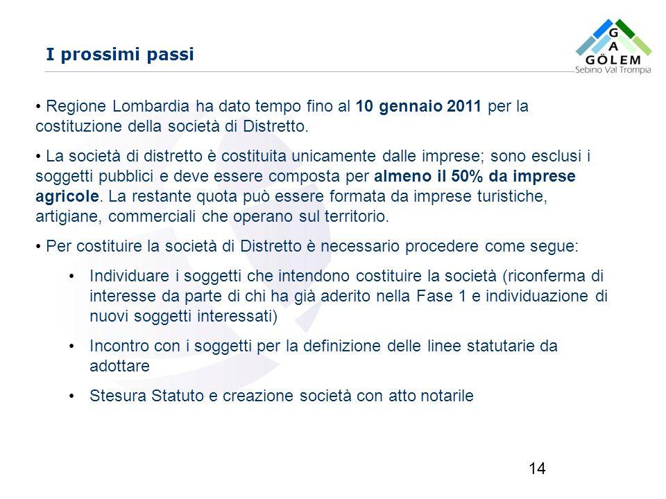 I prossimi passi Regione Lombardia ha dato tempo fino al 10 gennaio 2011 per la costituzione della società di Distretto.