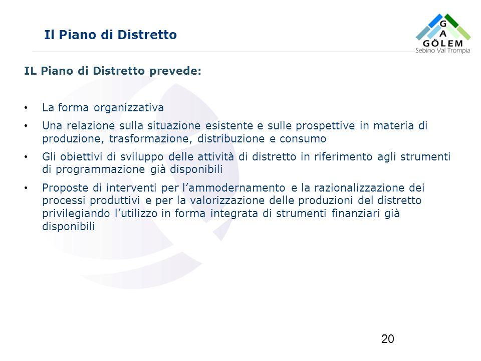 Il Piano di Distretto IL Piano di Distretto prevede: