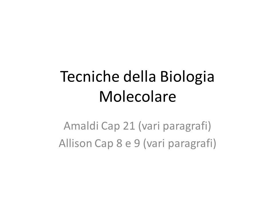 Tecniche della Biologia Molecolare