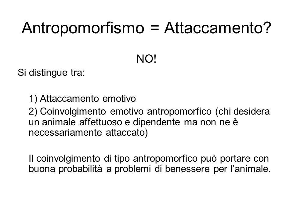 Antropomorfismo = Attaccamento