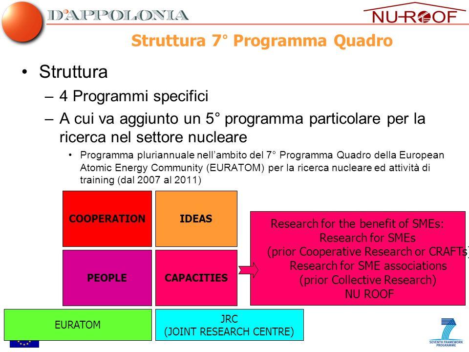 Struttura 7° Programma Quadro