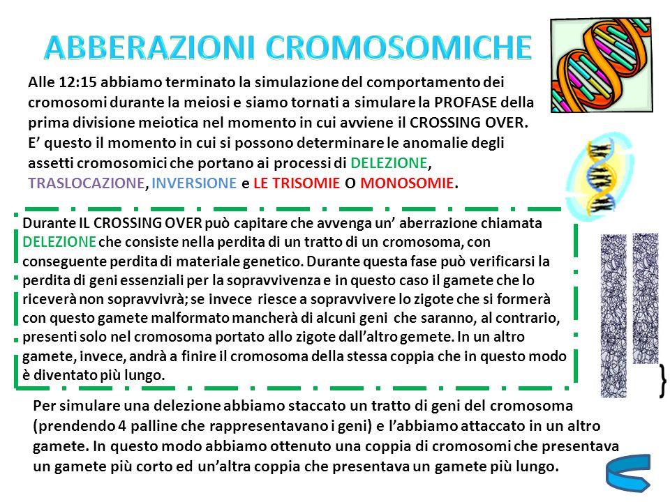ABBERAZIONI CROMOSOMICHE