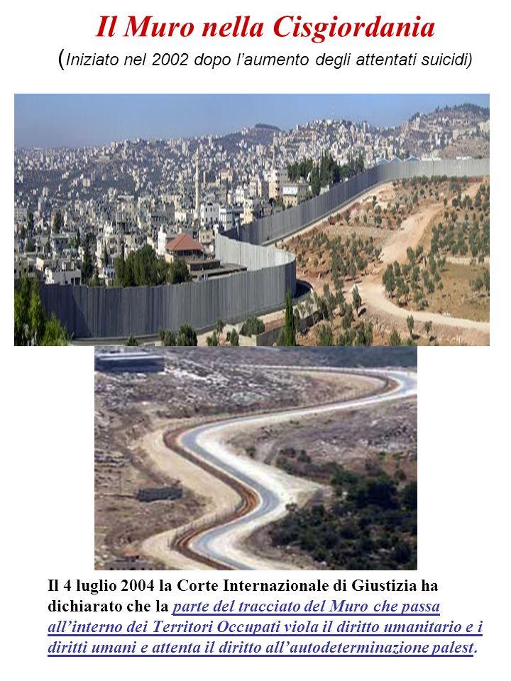 Il Muro nella Cisgiordania (Iniziato nel 2002 dopo l'aumento degli attentati suicidi)