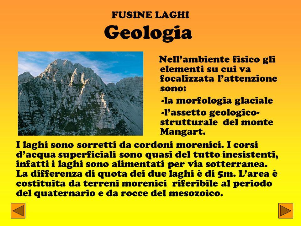 FUSINE LAGHI Geologia. Nell'ambiente fisico gli elementi su cui va focalizzata l'attenzione sono: -la morfologia glaciale.