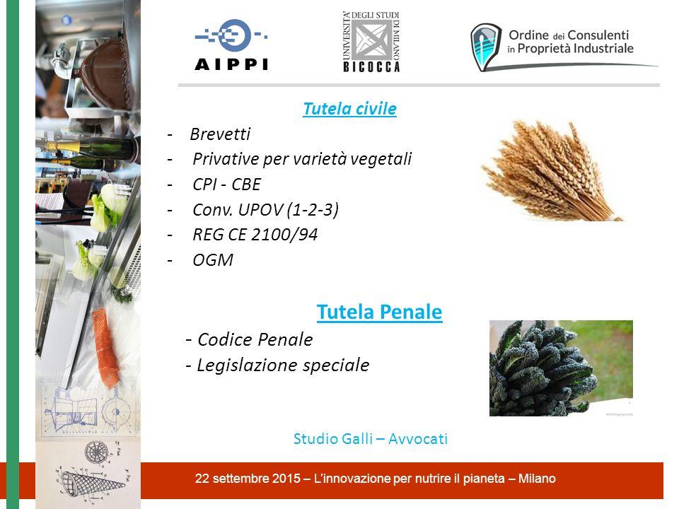 Tutela Penale - Codice Penale - Legislazione speciale Tutela civile
