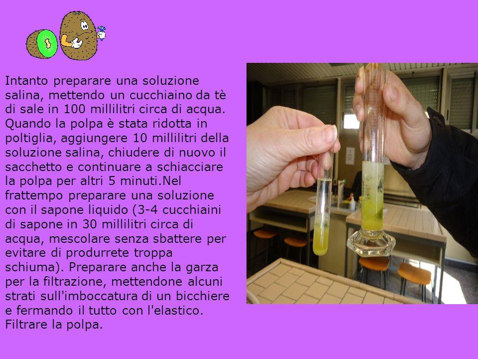 Intanto preparare una soluzione salina, mettendo un cucchiaino da tè di sale in 100 millilitri circa di acqua.