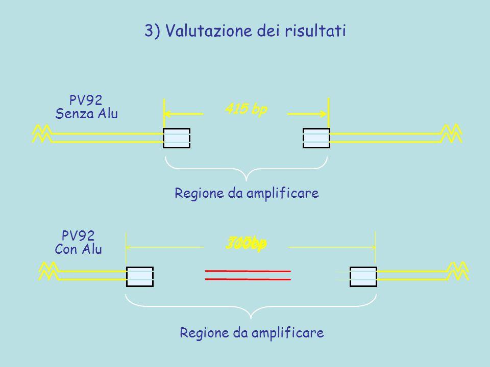 3) Valutazione dei risultati