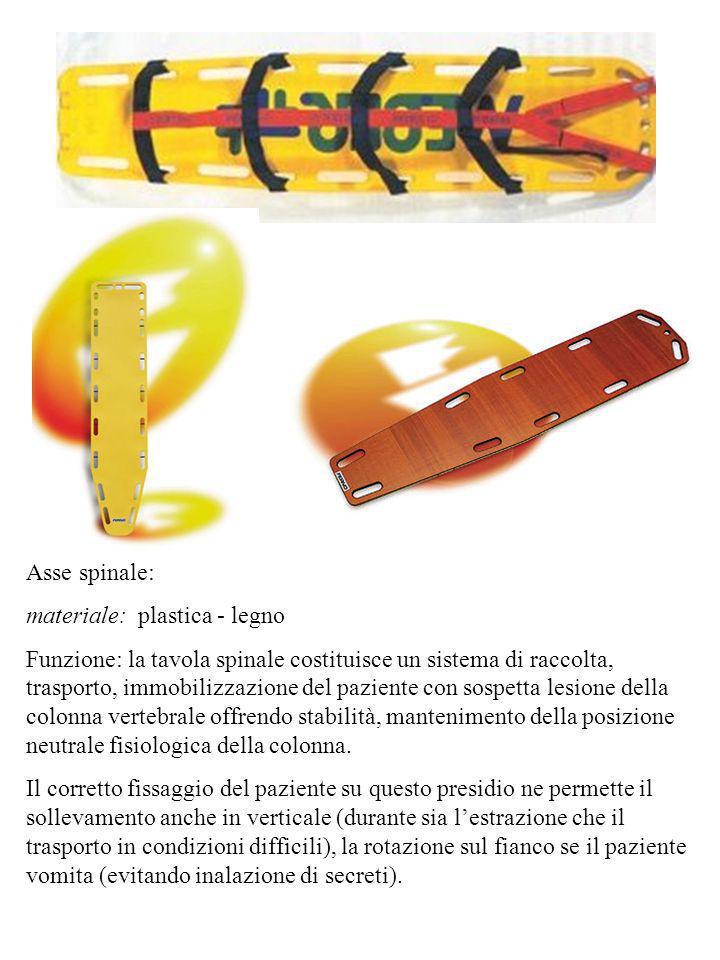 Asse spinale: materiale: plastica - legno.