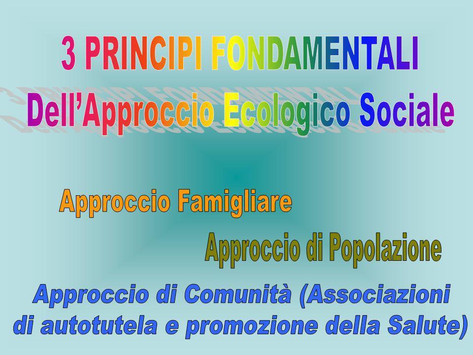 3 PRINCIPI FONDAMENTALI Dell'Approccio Ecologico Sociale