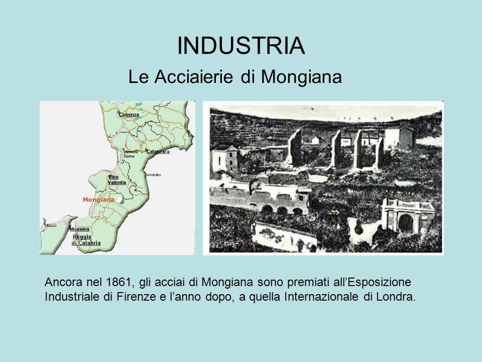 INDUSTRIA Le Acciaierie di Mongiana