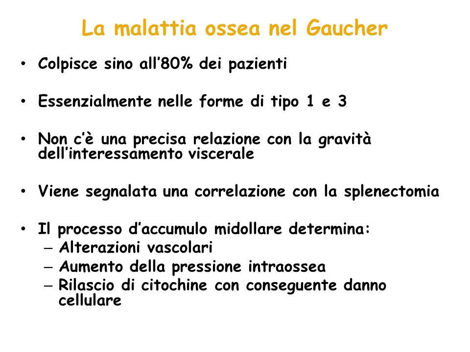 La malattia ossea nel Gaucher