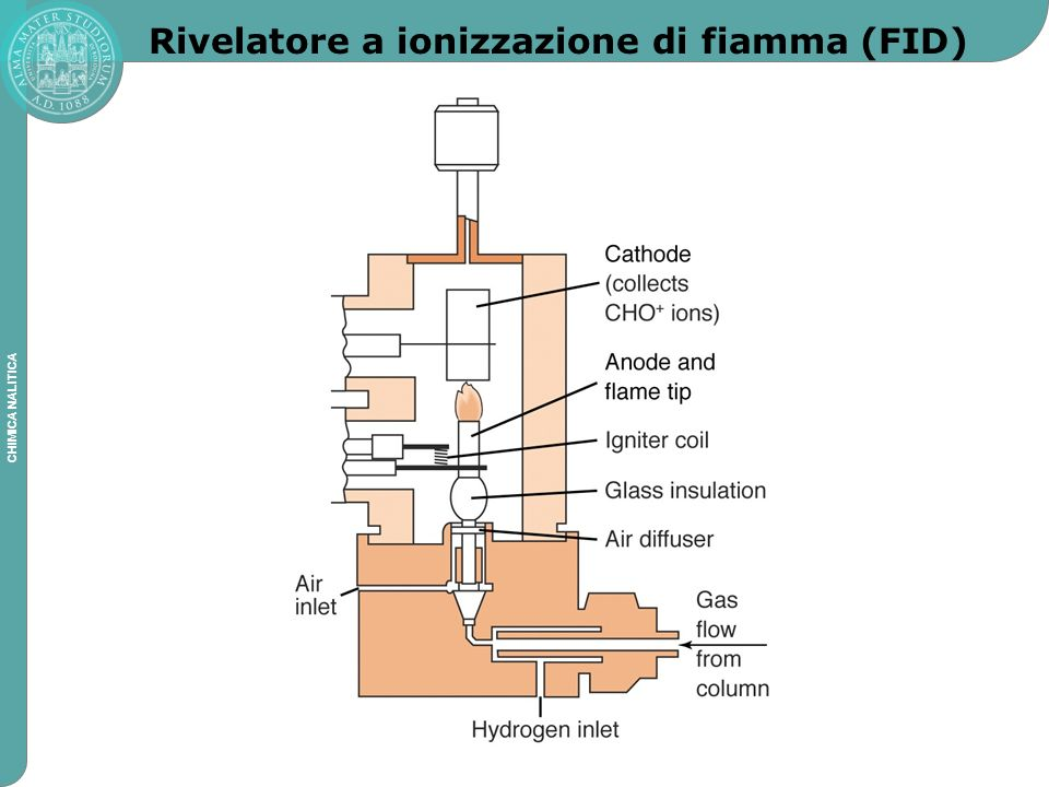 Rivelatore a ionizzazione di fiamma (FID)