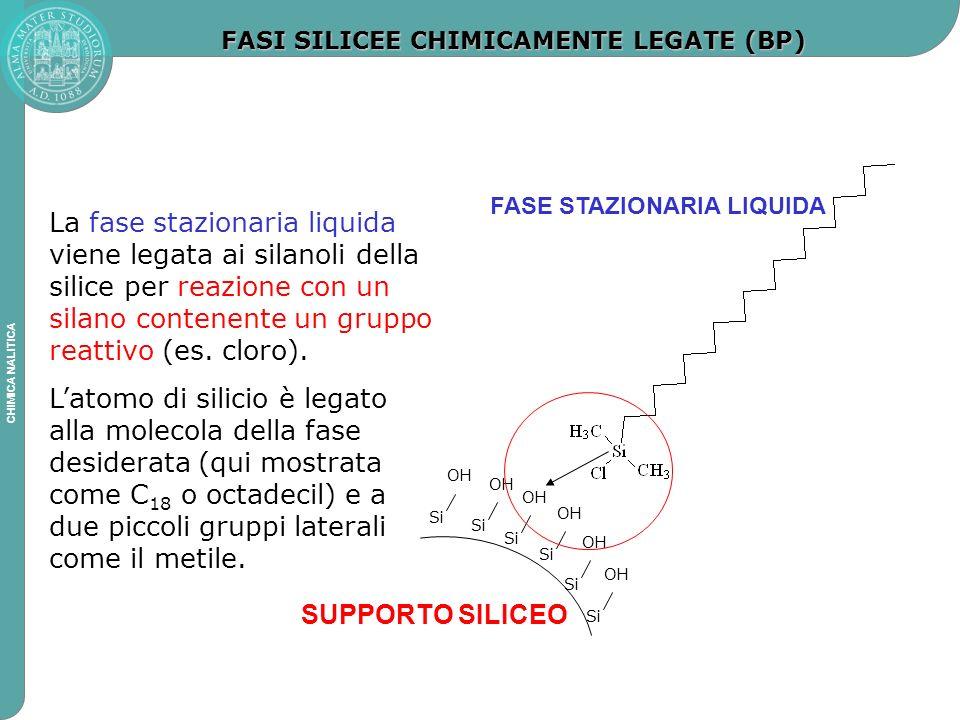FASI SILICEE CHIMICAMENTE LEGATE (BP)