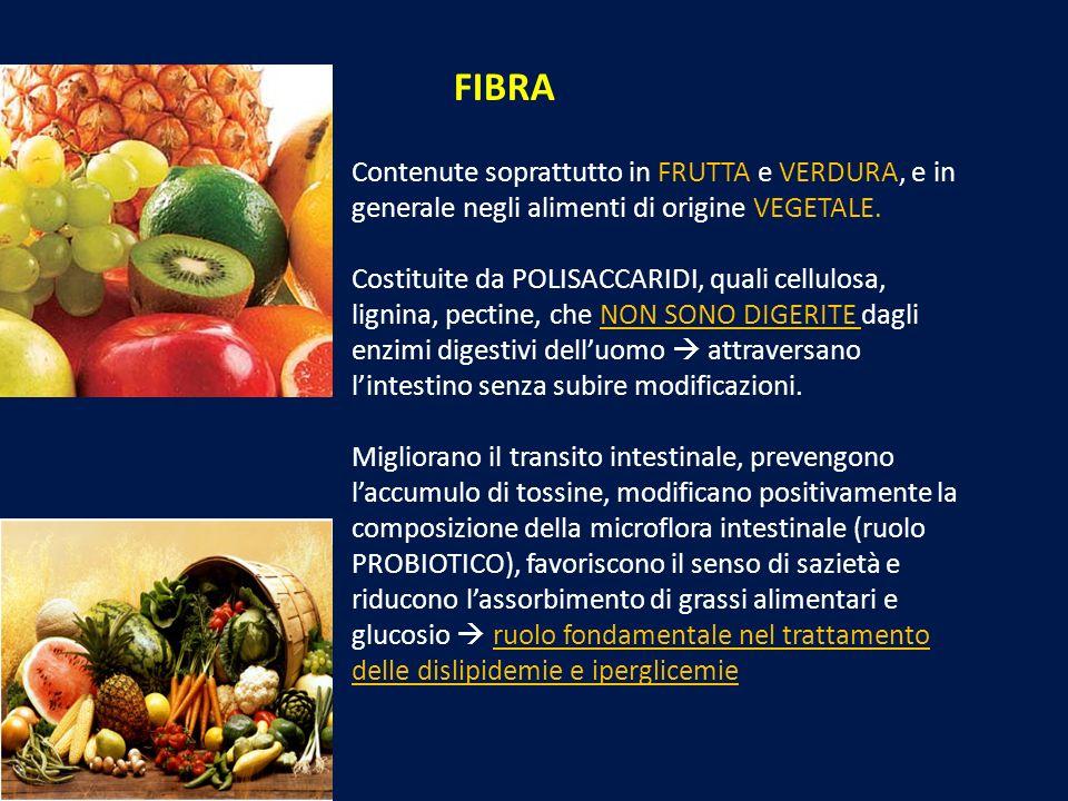 FIBRA Contenute soprattutto in FRUTTA e VERDURA, e in generale negli alimenti di origine VEGETALE.