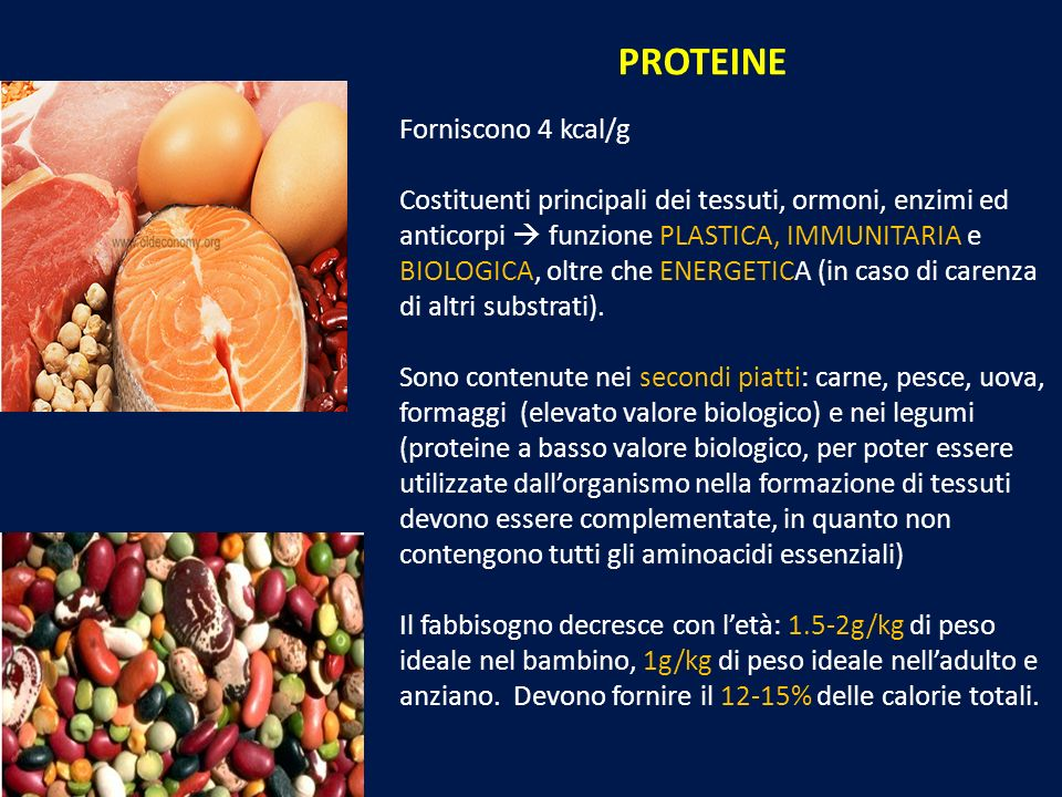 PROTEINE Forniscono 4 kcal/g