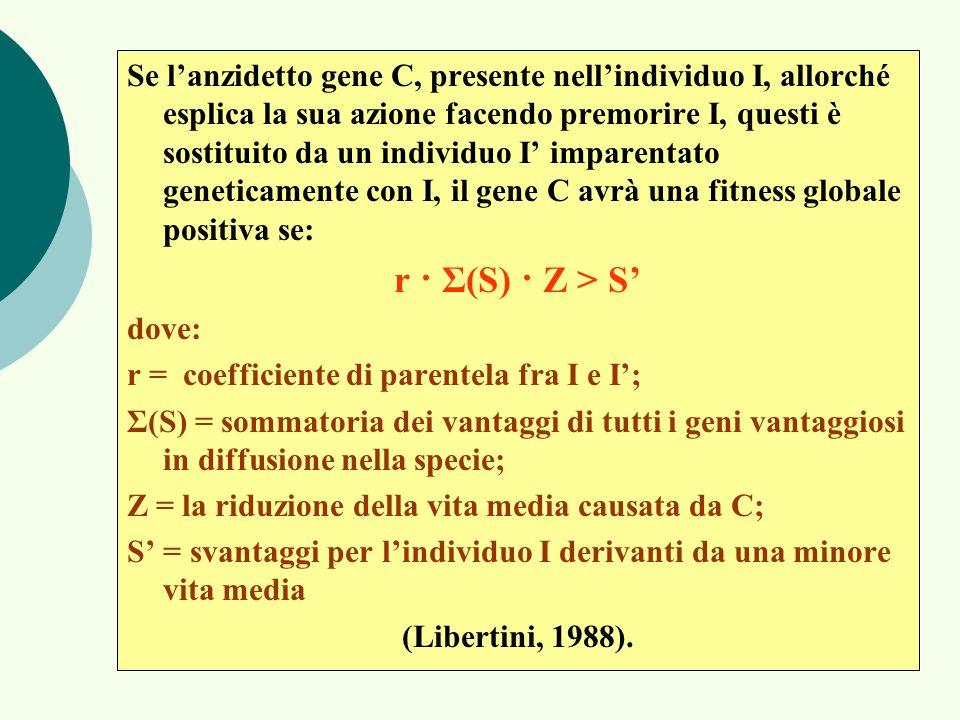 Se l'anzidetto gene C, presente nell'individuo I, allorché esplica la sua azione facendo premorire I, questi è sostituito da un individuo I' imparentato geneticamente con I, il gene C avrà una fitness globale positiva se: