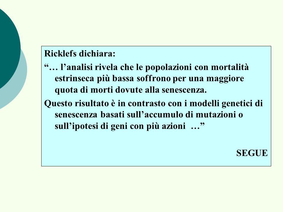 Ricklefs dichiara: