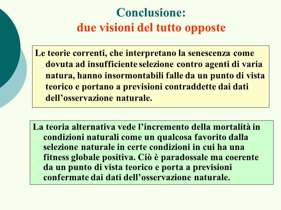 Conclusione: due visioni del tutto opposte
