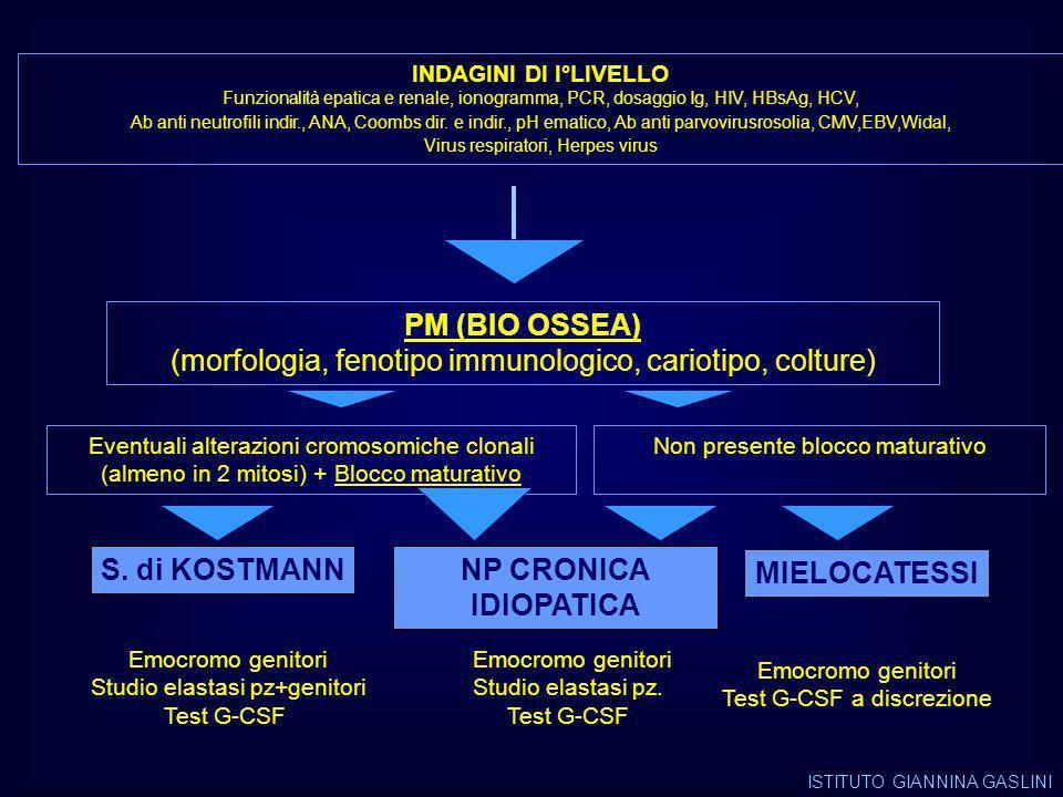 PM (BIO OSSEA) S. di KOSTMANN NP CRONICA IDIOPATICA MIELOCATESSI