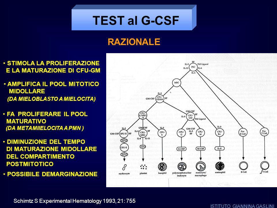 TEST al G-CSF RAZIONALE STIMOLA LA PROLIFERAZIONE