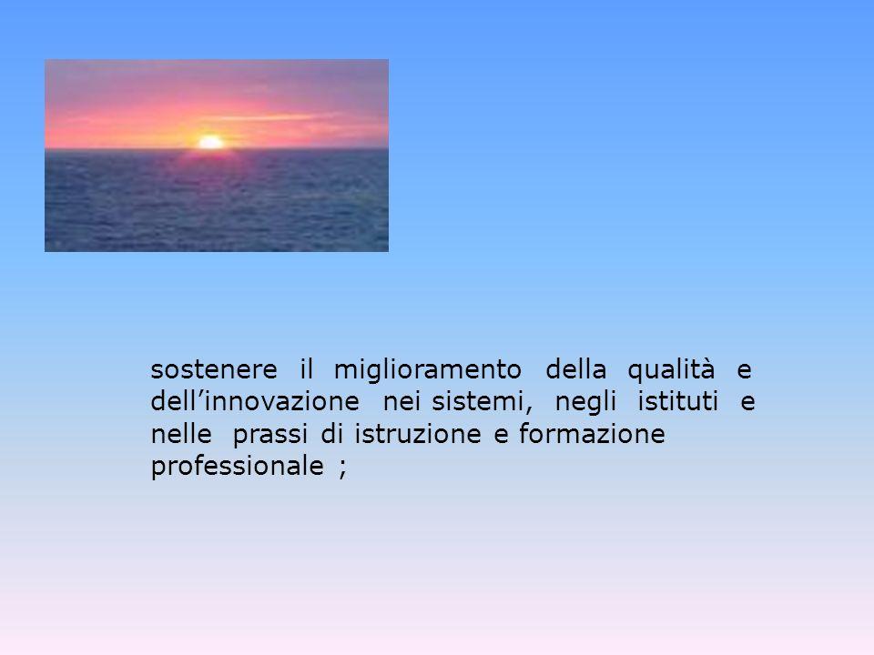 sostenere il miglioramento della qualità e dell'innovazione nei sistemi, negli istituti e nelle prassi di istruzione e formazione professionale ;