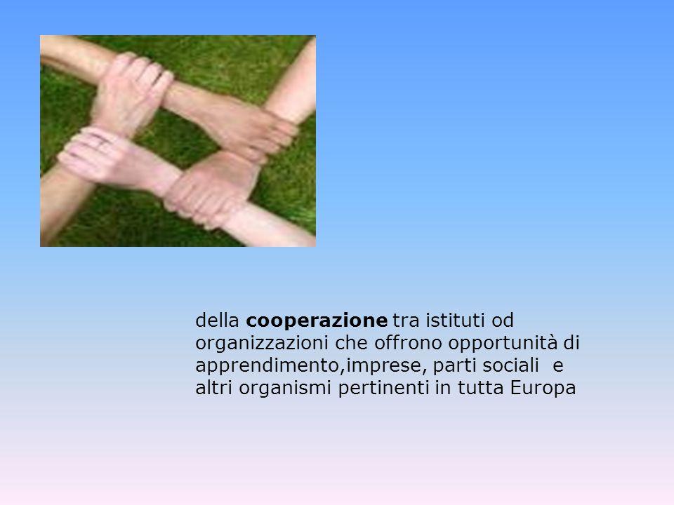 della cooperazione tra istituti od organizzazioni che offrono opportunità di apprendimento,imprese, parti sociali e