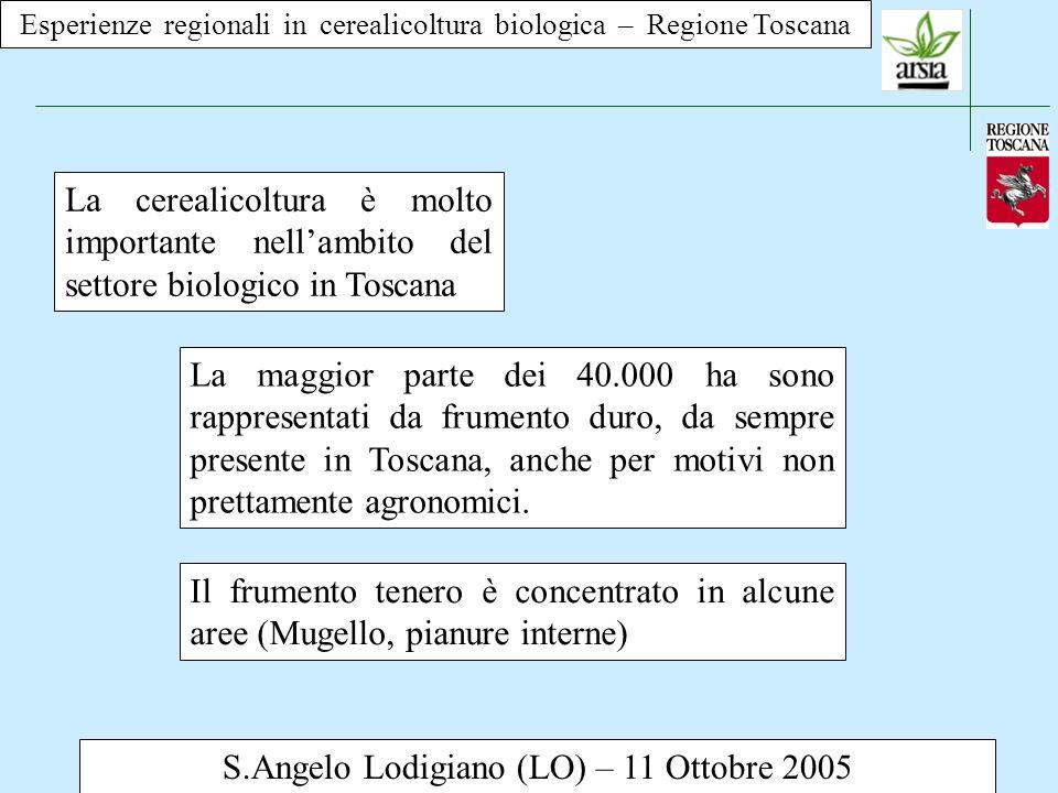 S.Angelo Lodigiano (LO) – 11 Ottobre 2005