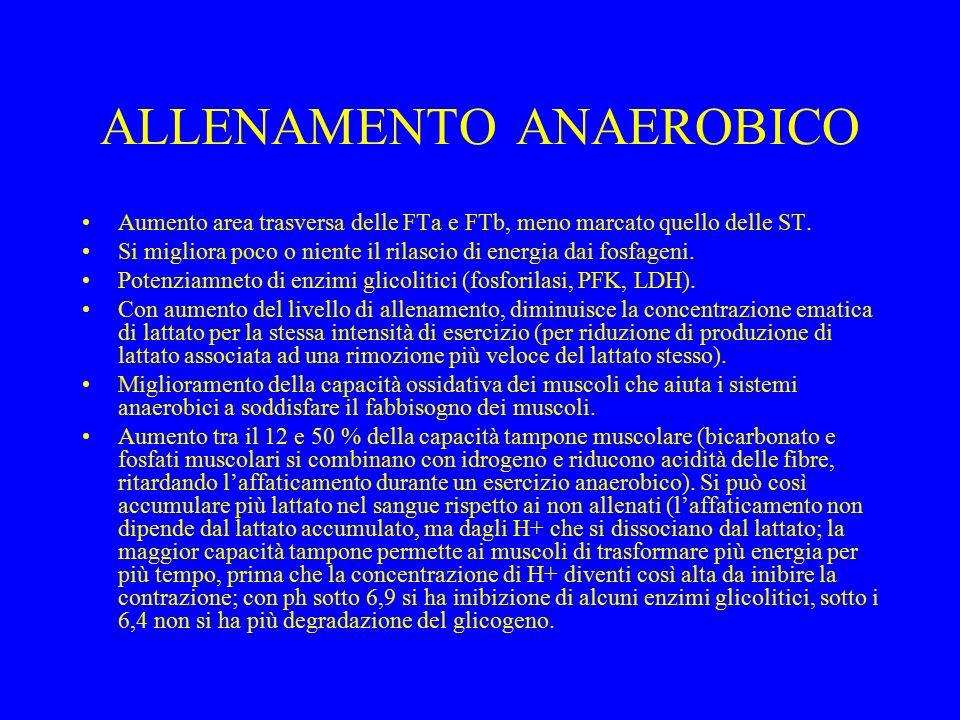 ALLENAMENTO ANAEROBICO